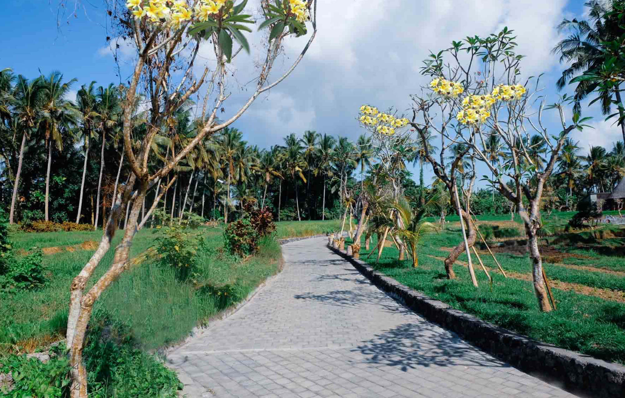 Private Jogging Track